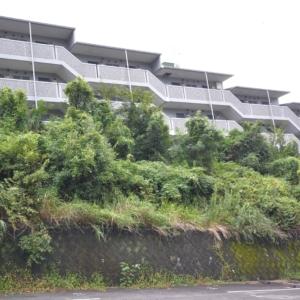 静岡大学まで徒歩圏内、見晴らしのよい物件です。RC造なので、耐震・遮音性に優れたマンションです♪