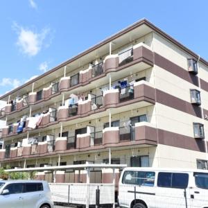 小学校まで徒歩6分、RC造りの防音性に優れたお部屋です♪ 陽当たり、通風、眺望も良好!お天気の良い日には、バルコニーから綺麗な富士山が望めますヨ\(^o^)/